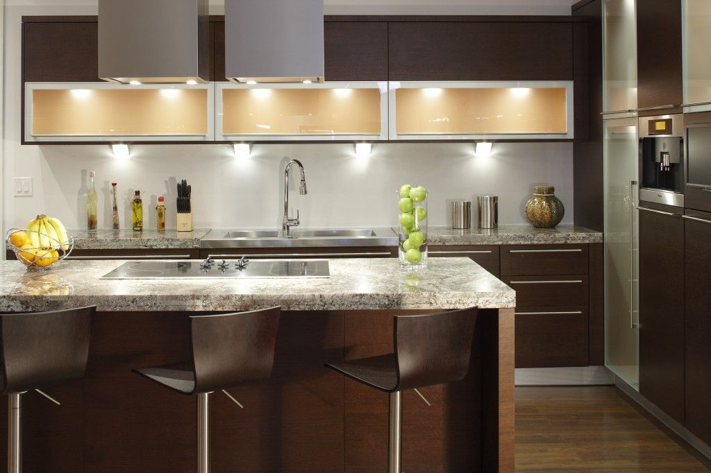 Cabinet Refacing or New Cabinets